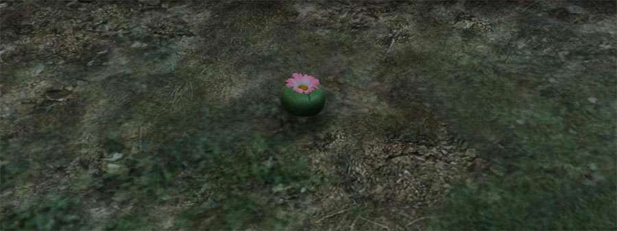 Plant to turn into an animal in GTA 5