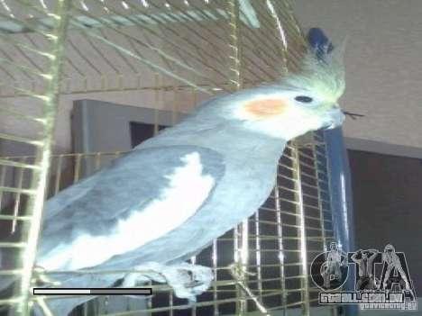 Beta de papagaios papagaio de tela de inicializa para GTA San Andreas oitavo tela