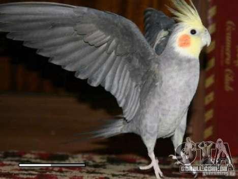 Beta de papagaios papagaio de tela de inicializa para GTA San Andreas sexta tela