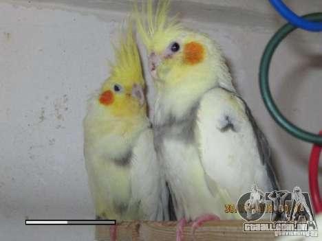 Beta de papagaios papagaio de tela de inicializa para GTA San Andreas por diante tela