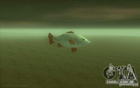 IDE em vez do golfinho para GTA San Andreas