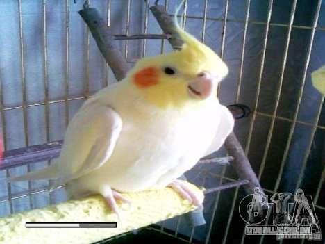 Beta de papagaios papagaio de tela de inicializa para GTA San Andreas décimo tela