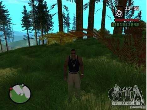 Real Grass v1.0 para GTA San Andreas segunda tela
