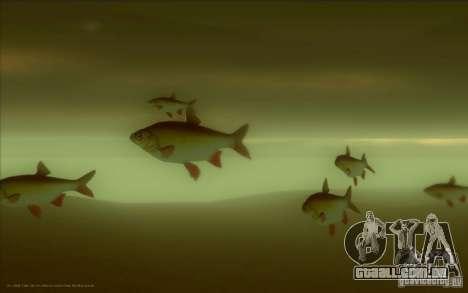 IDE em vez do golfinho para GTA San Andreas terceira tela