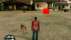 Tigre no GTA San Andreas