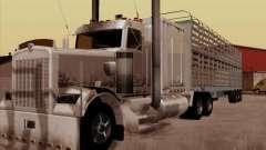 Kenworth W 900 RoadTrain