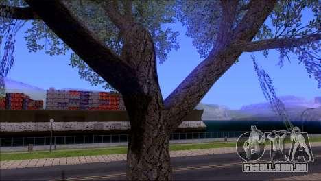 ENBSeries by egor585 V4 para GTA San Andreas oitavo tela