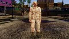 California National Guard Skin 1