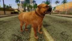 Rottweiler from GTA 5 Skin 2