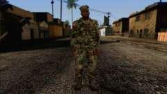 California National Guard Skin 3