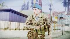 World In Conflict Malashenko